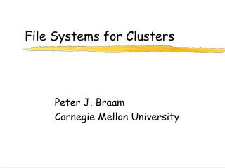 File Systems for Clusters