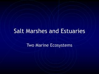 Salt Marshes and Estuaries