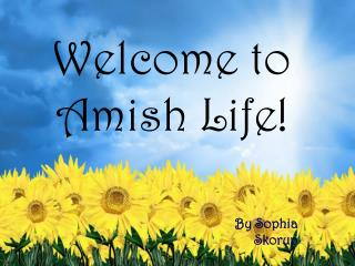 Welcome to Amish Life!