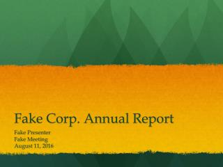 Fake Corp. Annual Report