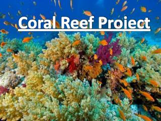 Coral Reef Project