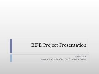BIFE Project Presentation