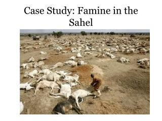 Case Study: Famine in the Sahel