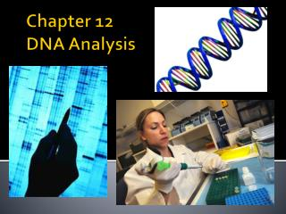 Chapter 12  DNA Analysis