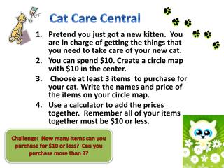 Cat Care Central