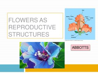 FLOWERS AS REPRODUCTIVE STRUCTURES