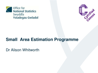 Small Area Estimation Programme