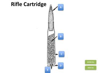 Rifle Cartridge
