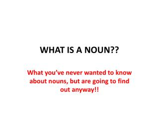 WHAT IS A NOUN??