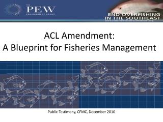 ACL Amendment: A Blueprint for Fisheries Management