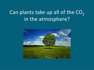 Can plants take up all of the CO 2  in the atmosphere?