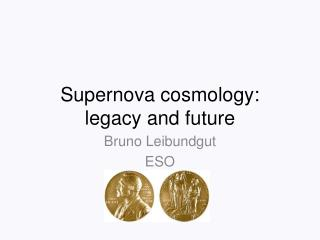 Supernova cosmology:  legacy and future
