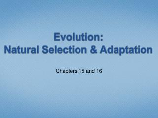 Evolution: Natural Selection & Adaptation