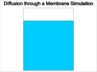 Diffusion through a Membrane Simulation
