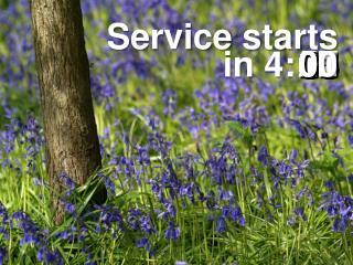 Service starts