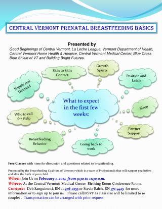 Central Vermont prenatal breastfeeding basics