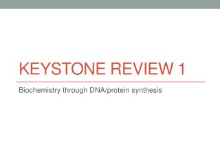 Keystone  review 1