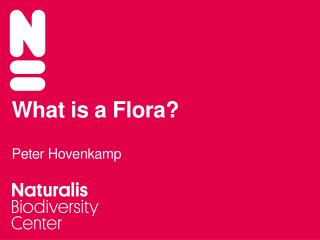 What is a Flora? Peter Hovenkamp
