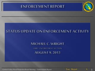 Status Update on ENFORCEMENT ACTIVITY michael  C. wright chief, enforcement Section AUGUST 9, 2013