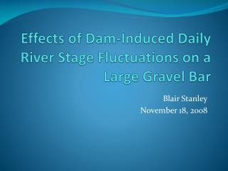 Effects of Dam-Induced Daily River Stage Fluctuations on a Large Gravel Bar
