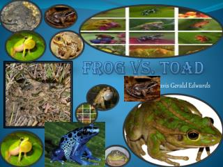 Frog vs. Toad