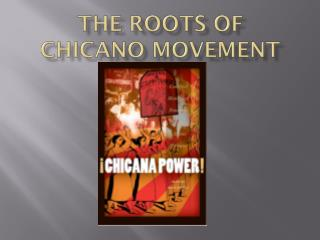 The Roots Of Chicano Movement