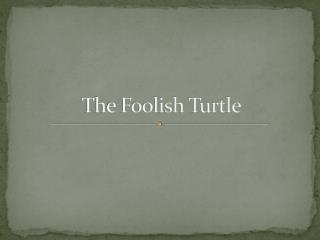 The Foolish Turtle