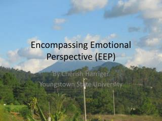 Encompassing Emotional Perspective (EEP)