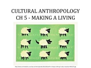 CULTURAL ANTHROPOLOGY  CH 5 - MAKING A LIVING
