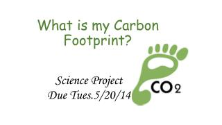 What is my Carbon Footprint?