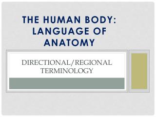 Directional/Regional Terminology