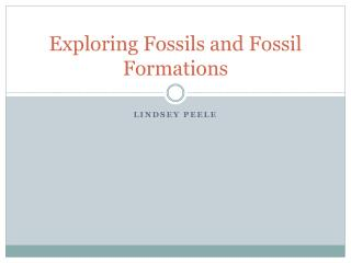 Exploring Fossils and Fossil Formations