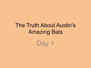 The Truth About Austin's Amazing Bats