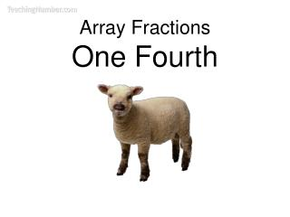 Array Fractions One Fourth
