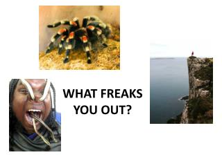 WHAT FREAKS YOU OUT?