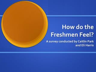 How do the Freshmen Feel?
