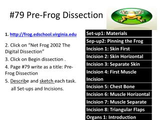 #79  Pre-Frog Dissection