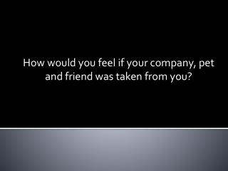 How would you feel if your company, pet and friend was taken from you?