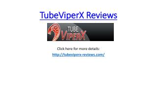 TubeViperX Reviews and Bonuses
