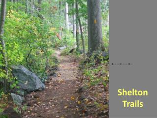Shelton Trails