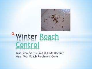 Winter Roach Control- Just Because It's Cold Outside Does No