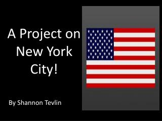 A Project on New York City!