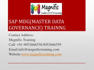 sap mdg(master data governance) training