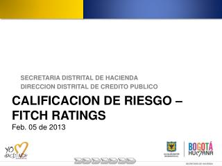 CALIFICACION DE RIESGO – FITCH RATINGS Feb. 05 de 2013