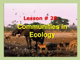 Communities in Ecology