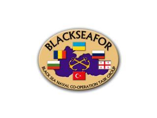 BLACKSEAFOR  2013