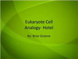 Eukaryote Cell Analogy- Hotel