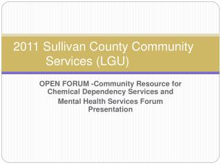 2011 Sullivan County Community   	   Services (LGU)