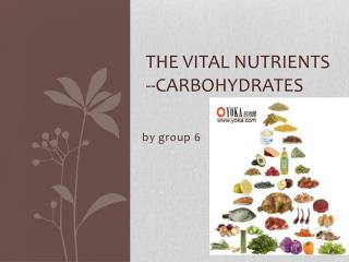 the vital nutrients --carbohydrates