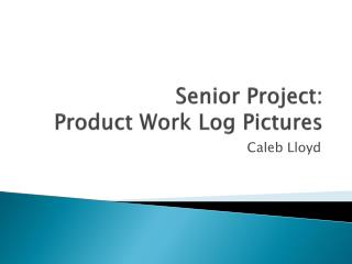 Senior Project: Product Work Log Pictures